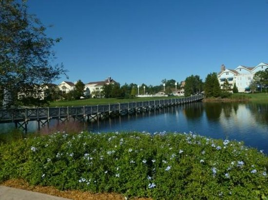 Disney's Saratoga Springs Resort & Spa: Bridge from Springs to Paddock