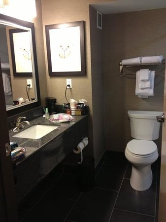 Comfort Inn & Suites I-10 Airport: nice bathroom. not quite sure why. coffee is there