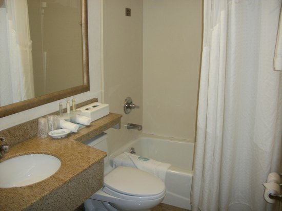 Holiday Inn Express Brooklyn: Bathroom