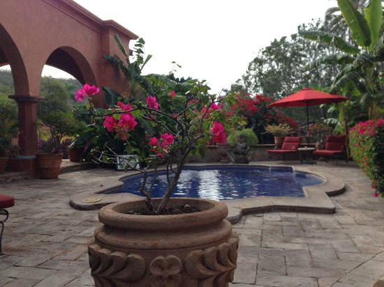 Hacienda De Los Santos: Flowers, flowers everywhere