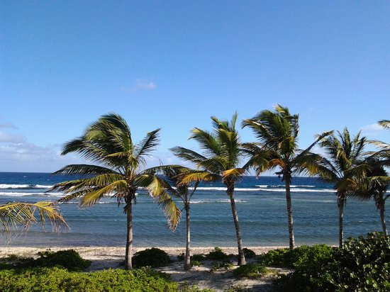 The Palms at Pelican Cove: The view of the beach