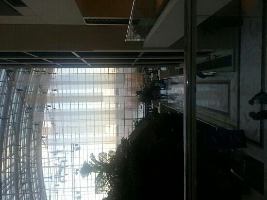 Gaylord National Resort & Convention Center: nice view