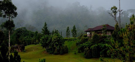 Borneo Highlands Resort: view from the hotel