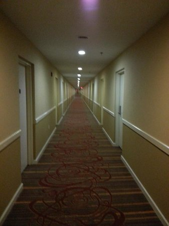 Comfort Inn Sandusky: The longest hotel hallway ever!!
