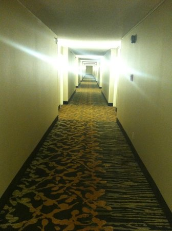 DoubleTree by Hilton Baltimore North - Pikesville: Another Long Corridor to my room