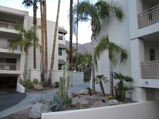 Palm Canyon Resort & Spa: driveway