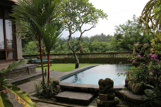 Pool garden villa 201 for Garden pool villa ubud