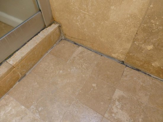 Ocean Eleven Guesthouse: Mold in shower
