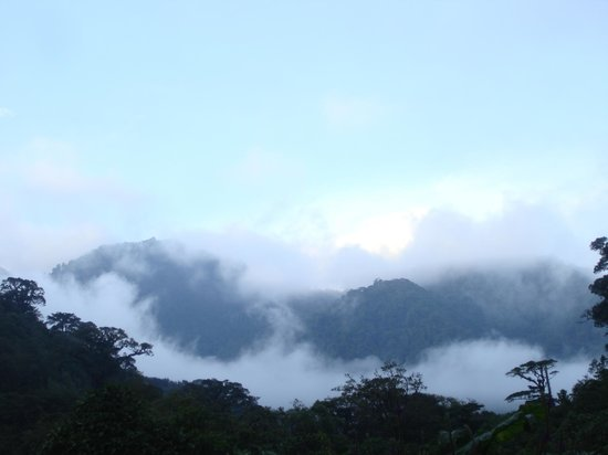 El Silencio Lodge: misty morning mountain