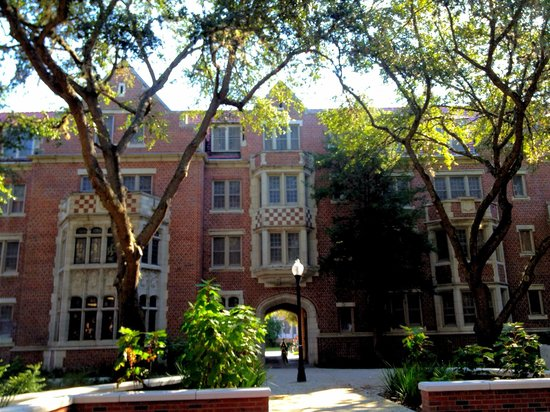 University of florida gainesville reviews of university of florida