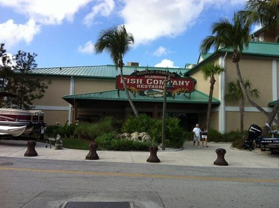 Hammerhead picture of islamorada fish company fort for Fish restaurant fort myers