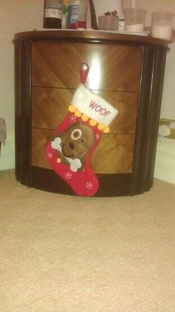 Royal Court Hotel - Coventry: even the dog has his own Xmas stocking