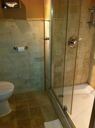 The Pine Marten (Innkeeper&#39;s Lodge): bathroon with shower