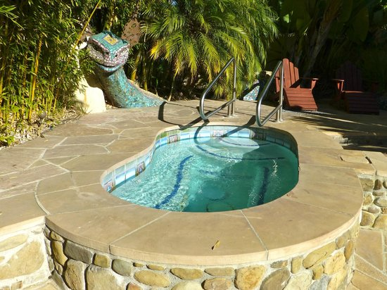 Blue Iguana Inn: Hot tub next to pool