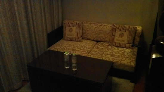 West Lake Hillview International Hotel: Couch area across from workdesk