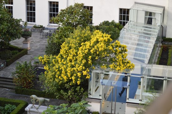The Merrion Hotel: grounds 1