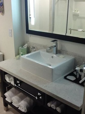 Holiday Inn Sarasota - Airport: Five star bathroom