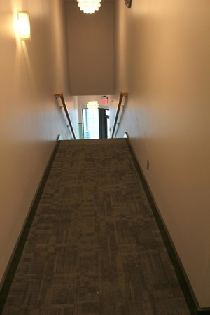 Suites at 118 stairway from Walnut Street