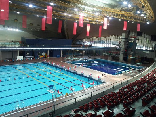 The Former Olympic Pool Now A Huge Swimming And Diving Complex Beneath The Tower Picture Of