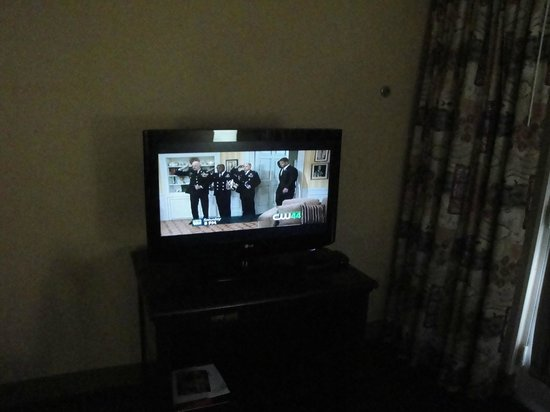 Holiday Inn & Suites near Busch Gardens - USF: bedroom tv on scratached table