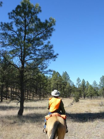 Geronimo Trail Guest Ranch: The skies really are that blue!