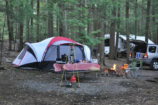 "Rip Van Winkle Campgrounds: Our ""Condo"" in the woods!!"