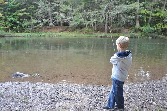 Rip Van Winkle Campgrounds: Our 4 yr old caught 2 fish this day!!