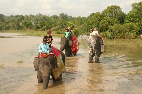 Satwa Elephant Eco Lodge : on the back of an elephant through the river