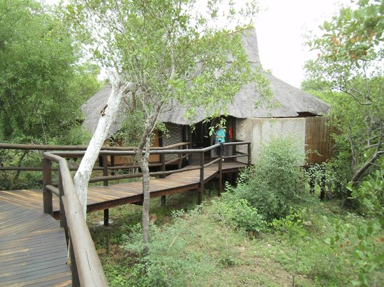 Lukimbi Safari Lodge: Lodge