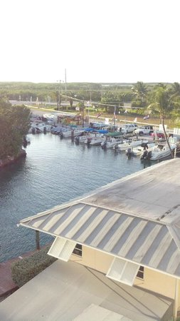 Pelican Cove Resort Marina Hotel Islamorada: marina view