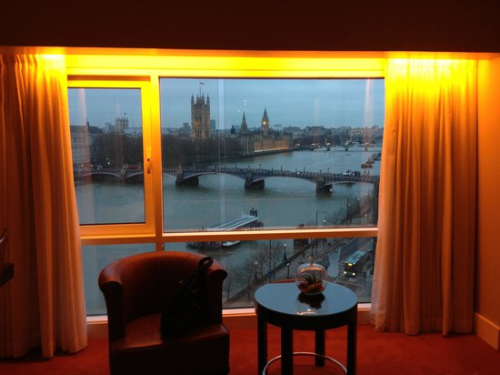 Park Plaza Riverbank London: River view