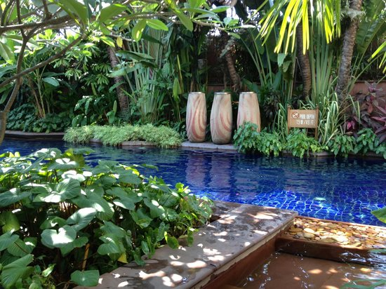 Sheraton Grande Sukhumvit, A Luxury Collection Hotel: pool