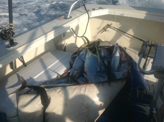 This is our crew member enjoying the charter shame on you for Start me up fishing