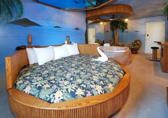 Comfort Suites Oakbrook Terrace: Hawaiian themed honeymoon suite