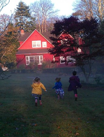 Woods Hole Passage Bed & Breakfast Inn: One foggy morning...