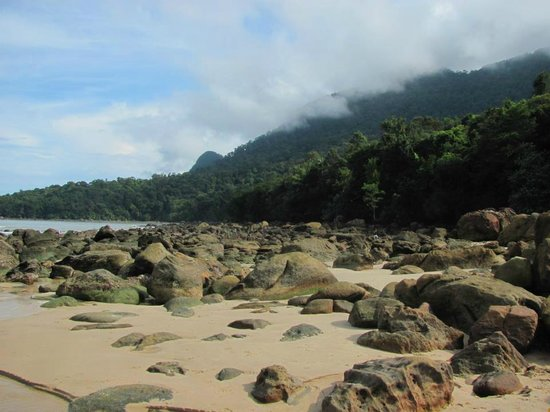 Permai Rainforest Resort: The beach at low tide