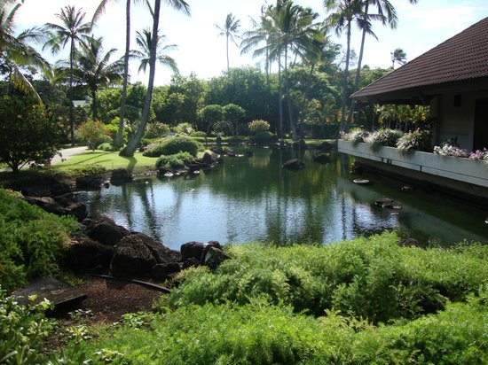 Sheraton Kauai Resort:                   View of Garden area