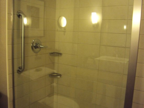 Cambria Suites Traverse City: Shower