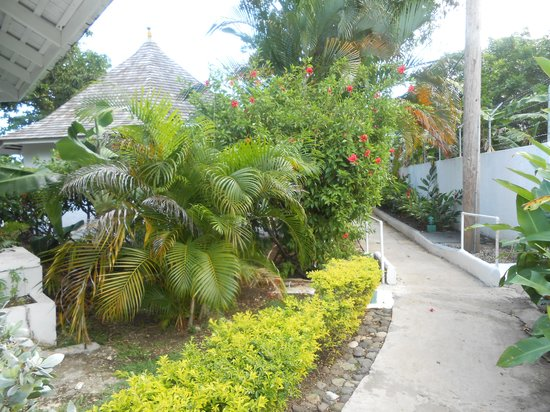 Royal Decameron Club Caribbean:                   Great flowers.
