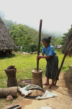 Ruteng, Indonesia: Wae Rebo woman pound of coffee beans