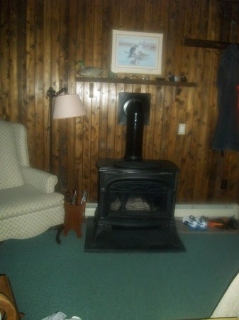 The Collier House Bed & Breakfast: Fireplace