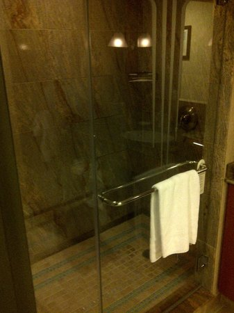 Seneca Niagara Casino & Hotel:                   2 person shower