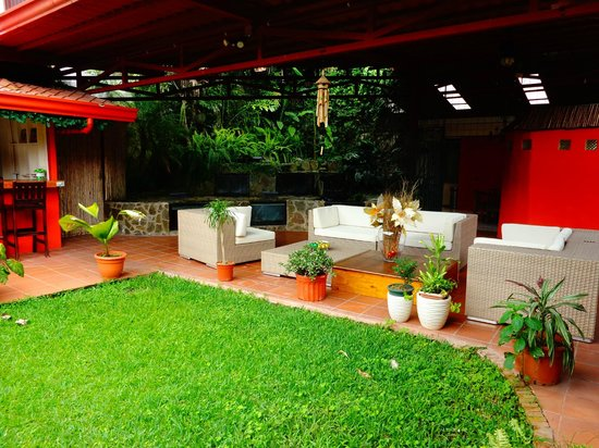 Turrialba Bed and Breakfast:                   The yard