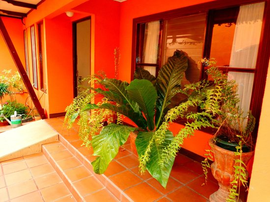 Turrialba Bed and Breakfast:                   Entrance