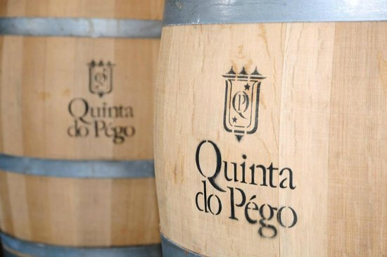 Quinta do Pego: Wine shop