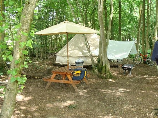 Eco Camp UK - Wild Boar Wood Campsite: The central campfire area