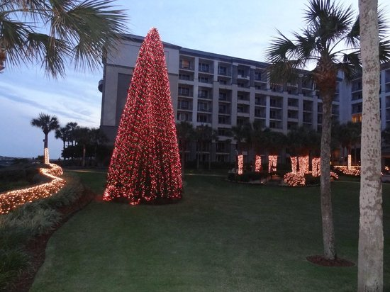 The Ritz-Carlton - Amelia Island:                   Christmas tree outside the main lobby area