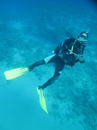 Sharks Bay Umbi Diving Village:                   Pic from scuba diving off the beach! :))