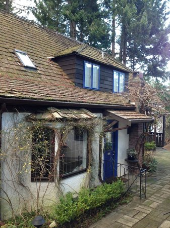 Blue Willow Guest House:                   Charming house and grounds
