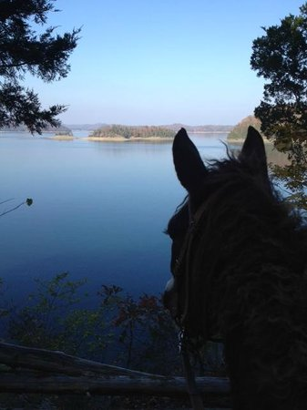 Burkesville, KY:                   Incredible trailride